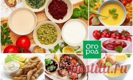 Как приготовить соус в домашних условиях: 10 самых популярных рецептов | Статьи (Огород.ru)