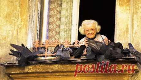 В нашем подъезде жила бабушка. Бабушка Люба. Ей было 97 лет. Милая, приятная старушка, всегда в хорошем настроении, улыбчивая и приветливая. Сначала бабушка Люба украсила подоконники на нашем этаже и в нашем подъезде горшками с цветами. Красиво. На следующий день самые яркие цветы, те, что с бутонами, украли, и около метро можно было увидеть прытких торговцев с горшками с бабушкиными цветами. Соседи решили поставить замок и домофон на входную дверь. А она повесила на стены рамки с изречениями…