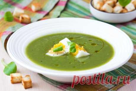 Как вкусно приготовить суп-пюре из брокколи: рецепт - Приготовление супа-пюре из брокколи не занимает более 30-40 минут. Все ингредиенты доступны, особенно в летне-осенний сезон. Чтобы радовать родных круглый год вкусными и полезными блюдами, замораживают овощи впрок. Пюреобразный суп... Read more »