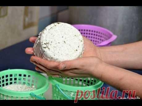 We cook cheese of a kachott of the house at Marina Kamanina