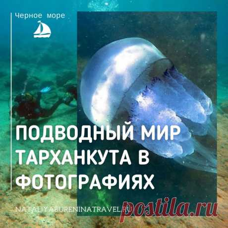 🌊🌊🌊О дайвинге все знают, но далеко не все сами погружались с аквалангом. Для большинства подводный мир недоступен или труднодоступен. А еще подводный мир - это тайна, что-то чужое, скрытое и пугающее непроницаемыми темными глубинами. Когда я первый раз нырнула с аквалангом, первое ощущение было чужеродности новой среды. Мир под водой🌊 - это как другая планета, таинственная, но красивая и притягательная. Из-за пандемии я приостановила путешествия, и дайвинг пока отложен на неопределенное врем