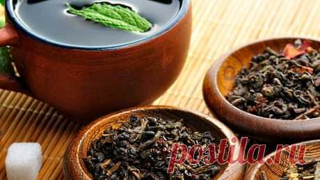 Наполнитель из чая для посева семян, отзывы и рекомендации