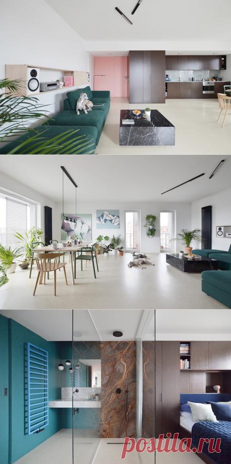 Gregorz Layer (Польша). Просторная квартира для владельцев собак — Дом и Сад