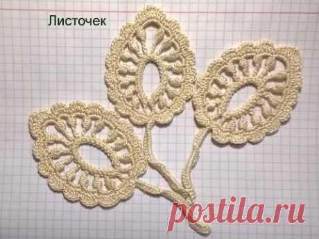 Leaf. Irish lace.