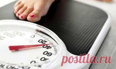 4-недельный план диеты для похудения: рабочий метод без вреда для здоровья