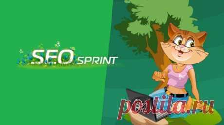 Обзор сайта для заработка Сеоспринт (Seosprint.net): отзывы