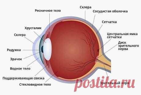 Как вернуть зрение без операции