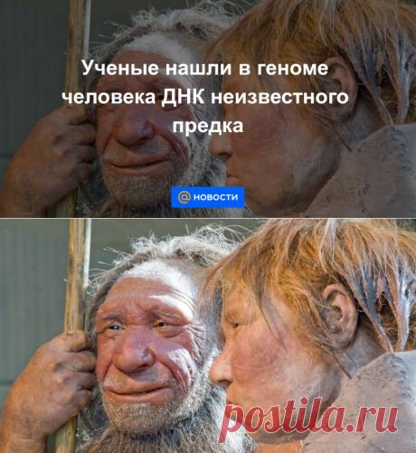 Ученые нашли в геноме человека ДНК неизвестного предка - Новости Mail.ru