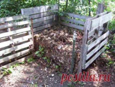 Как правильно приготовить мульчу и компост из опилок | Дача - впрок