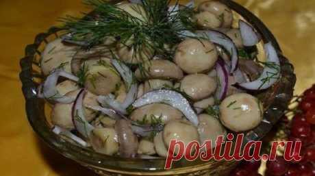 Безумно вкусные и нежные маринованные шампиньоны. Потрясные грибы можно подавать с любым гарниром!