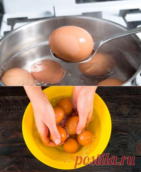 Знакомая показала, как сварить куриные яйца без кипячения. Получается вкуснее и полезнее!
