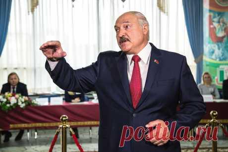 Лукашенко: мы на коленях больше ни перед кем ползать не будем - Политика на N1.BY