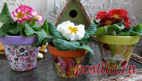 Как украсить цветочный горшок своими руками Комнатные растения украшают интерьер помещения, придают ему живописный и эстетичный вид. Чтобы комнатные растения гармонировали с окружающим пространством и стали эффектным акцентом в интерьере, следует позаботиться о том, чтобы цветы всегда были ухоженными, и росли в красивых оригинальных...