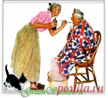 Ароматерапия для пожилых людей. Профилактика бронхолегочных заболеваний. — greensashet