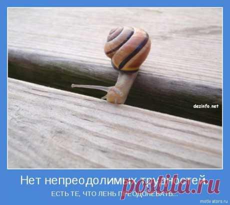 Трудности. Притча | Блог Мира | КОНТ