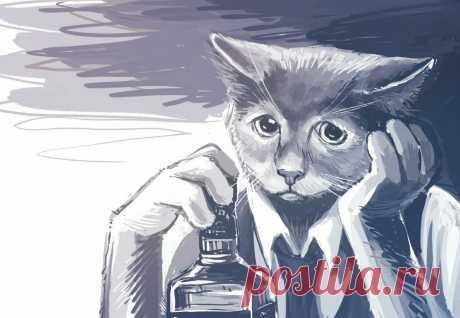 Пьющий кот - горе в семье