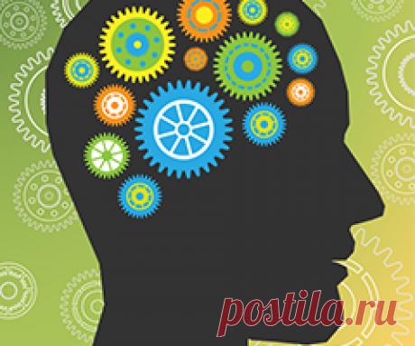 Como hacer el cerebro de la persona es más rápido trabajar y es más eficaz — Викиум.ру