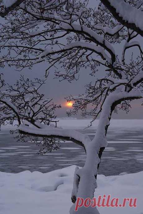 La tarde invernal