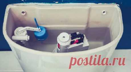 Зачем я кладу зубную пасту в бачок унитаза