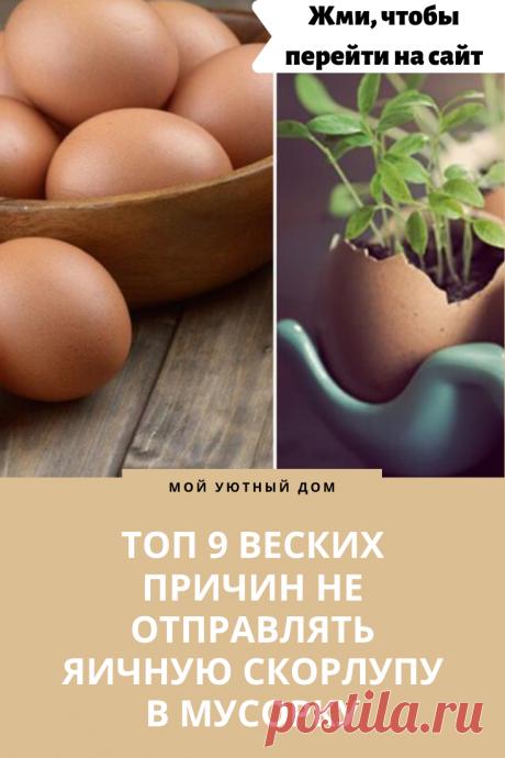 Идеи как использовать яичную скорлупу