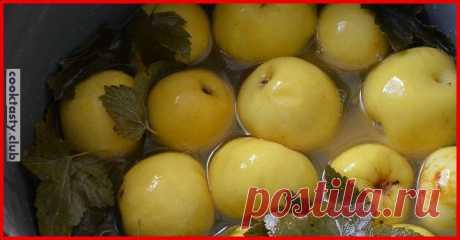 2 старых рецепта моченых яблок . Милая Я