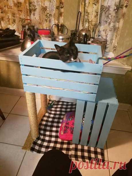 От ненужных деревянных ящиков есть большая польза. Купила за 25 рублей и сделала стильный декор. | Магазинчик | Яндекс Дзен