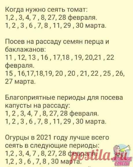 (16) Facebook