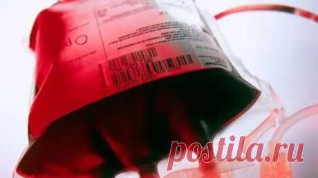 Группы крови: почему они разные и как влияют на нашу диету и болезни - ПолонСил.ру - социальная сеть здоровья - медиаплатформа МирТесен