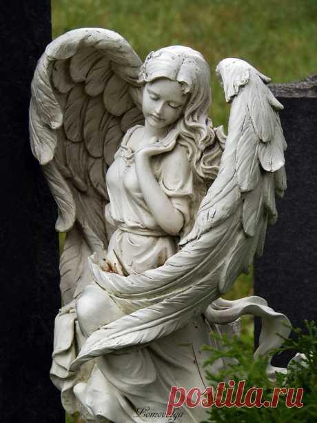 Застывшие в камне... | Ангелы на земле