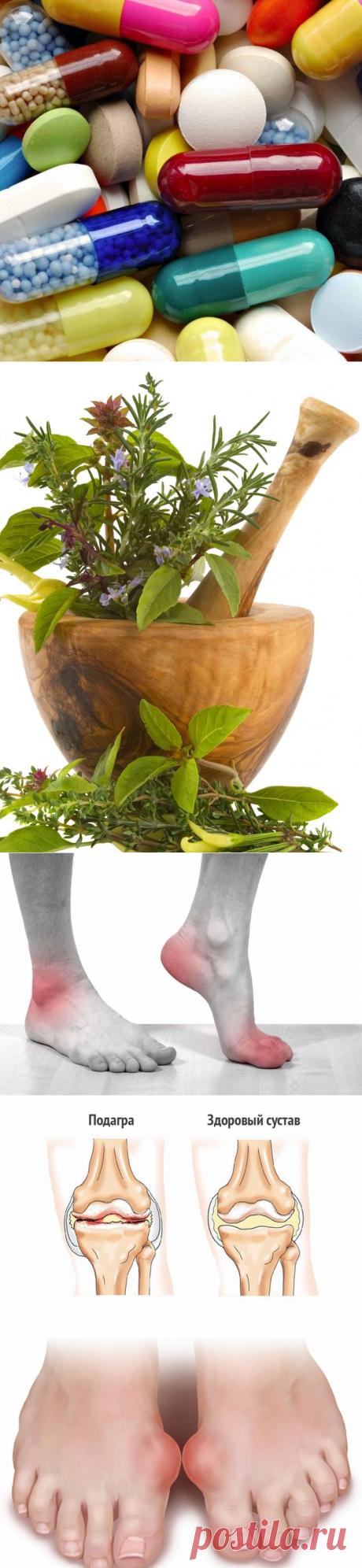 Травы при подагре: эффективное лечение сборами, ванночками и компрессами