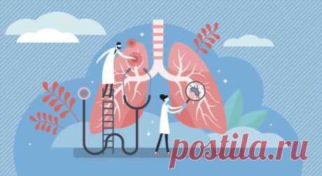 Туберкулез — рапространенность, симптомы, лечение . Милая Я