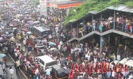 Индийский Мумбаи стал вторым в мире городом с наивысшей плотностью населения | Общество