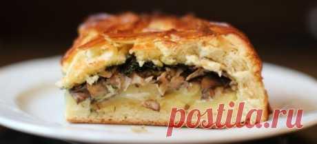 Лучшие рецепты пирогов с грибами