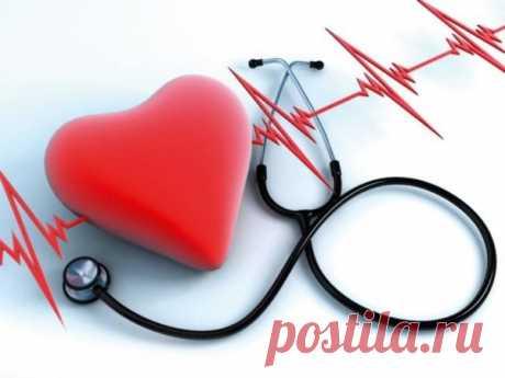 Народные средства для нормализации сердцебиения | На здоровье! | Яндекс Дзен