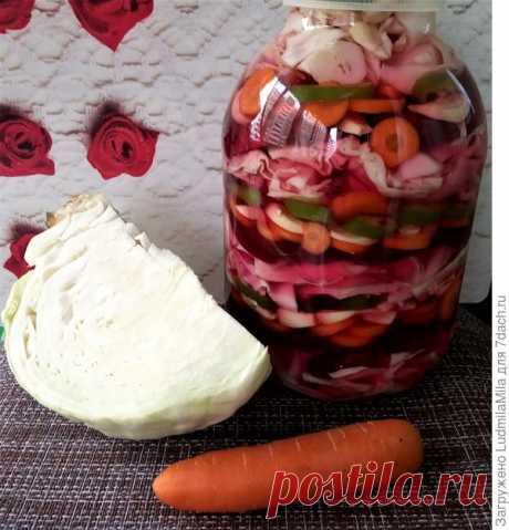 Квашеная капуста с чесноком и свеклой на зиму - пошаговый рецепт приготовления с фото