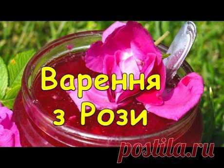 Дуже смачне Варення з Рози,як зробити варення з рози,Варенье из розы,варення з рози,джем,повидло