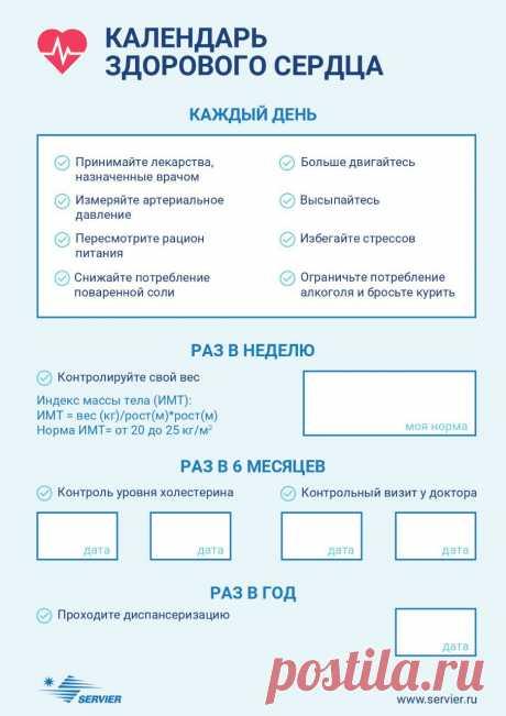 Здоровье по расписанию: как правильно заботиться о сердце - Здоровье Mail.ru