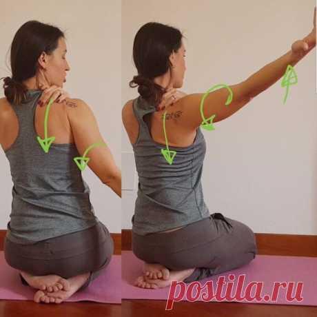 Как правильно поднимать руки, чтобы не создавать напряжения в шее и плечах. | Йога для жизни. | Яндекс Дзен