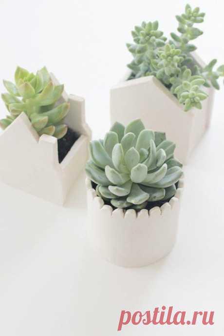Горшочки для цветов из полимерной глины своими руками  