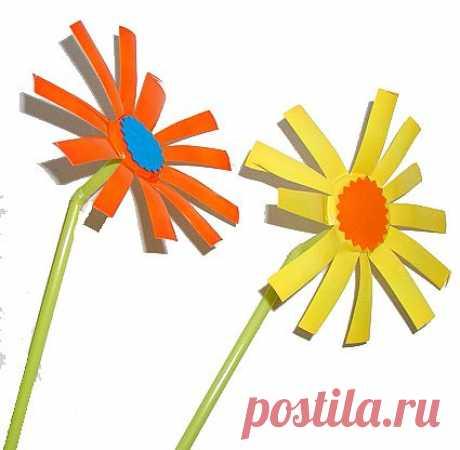 Цветы по мотивам Пикассо