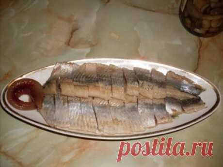 Малосольная скумбрия или сельдь : Рыбные блюда