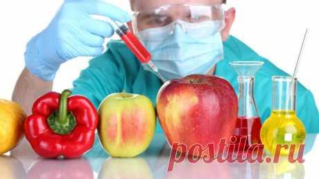 Нужны ли человечеству генно-модифицированные продукты? | Мир вокруг нас