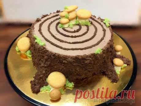 Бисквит Губка для украшения тортов