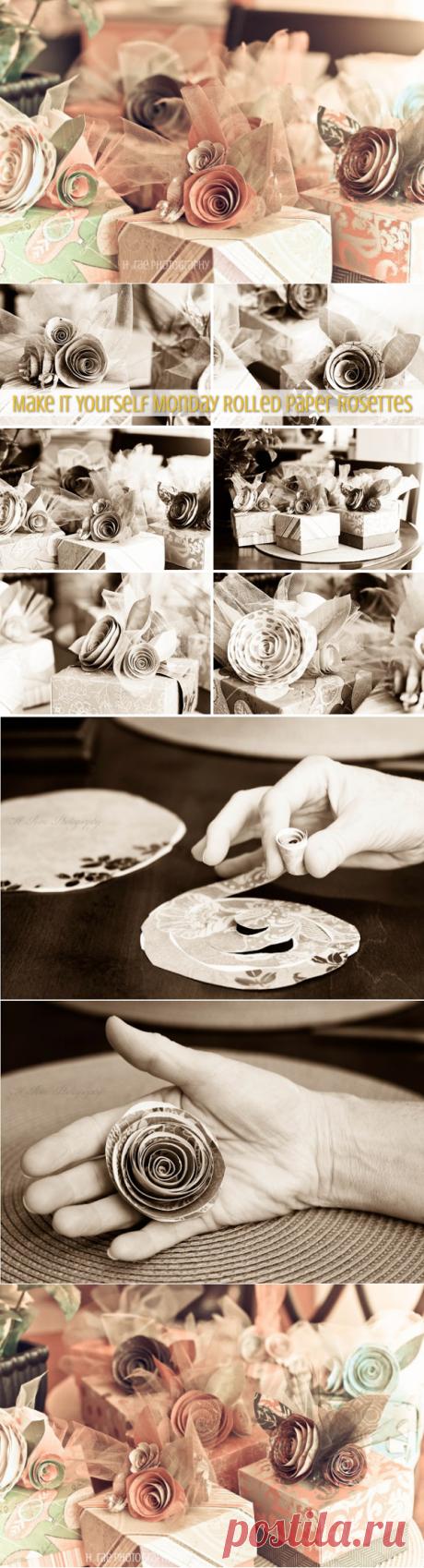 Спиральные розы из бумаги. Очень красивая работа и отличный мастер-класс