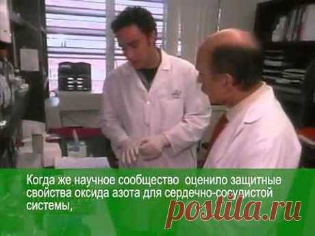 Луи Игнарро об оксиде азота - YouTube  skype - karitabove