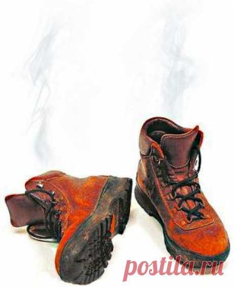 Как убрать запах из обуви   Упрости себе жизнь