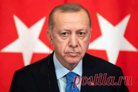 Станет ли Эрдоган султаном всего Кавказа или споткнется о Россию