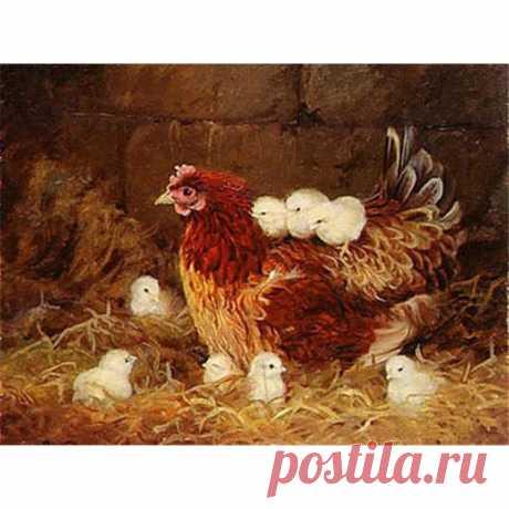 DIY 5D алмазная живопись, животные, ферма, курица, полная круглая Алмазная вышивка, вышивка крестом, стразы, мозаика, домашний декор, подарок|Алмазная роспись, вышивка крестом