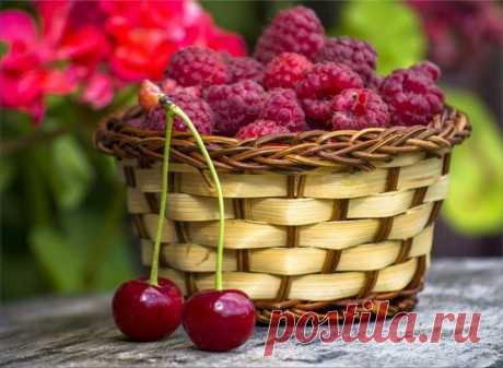 «🌺 Дары лета. Ягоды,фрукты 🌺 » в Яндекс.Коллекциях