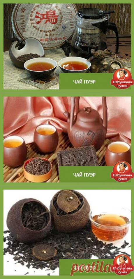 Знакомимся с китайским чаем ПУЭР: свойства, правила выбора и советы!..